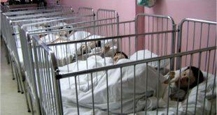 ΑΠΟΚΛΕΙΣΤΙΚΟ LABEL NEWS: «8 παιδιά έχουν πεθάνει, κοιμούνται Χειμώνα με σπασμένα τζάμια και μένουν σε χώρους κλουβιά», ο Εκπρόσωπος Γονέων & Κηδεμόνων Καταγγέλλει την Διοίκηση στο Θεραπευτήριο Σκαραμαγκά