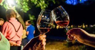 «Βόλτα στον Αττικό Αμπελώνα» – Έρχεται η μεγαλύτερη έκθεση κρασιού από τους Αμπελώνες Αττικής στο Ίδρυμα Μιχάλης Κακογιάννης