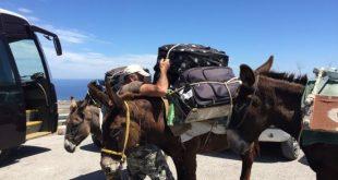 Ιδιοκτήτες γαϊδουριών στην Σαντορίνη πήγαν να πετάξουν δημοσιογράφο από τον γκρεμό